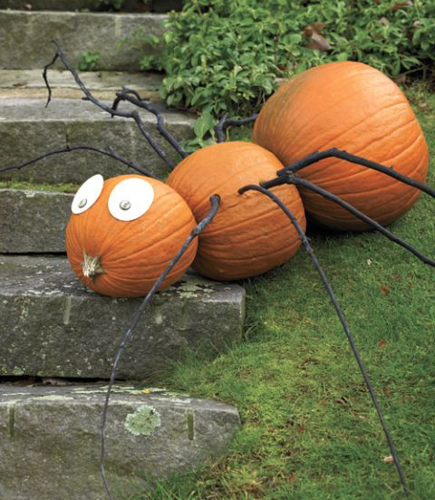 diy pumpkin spider