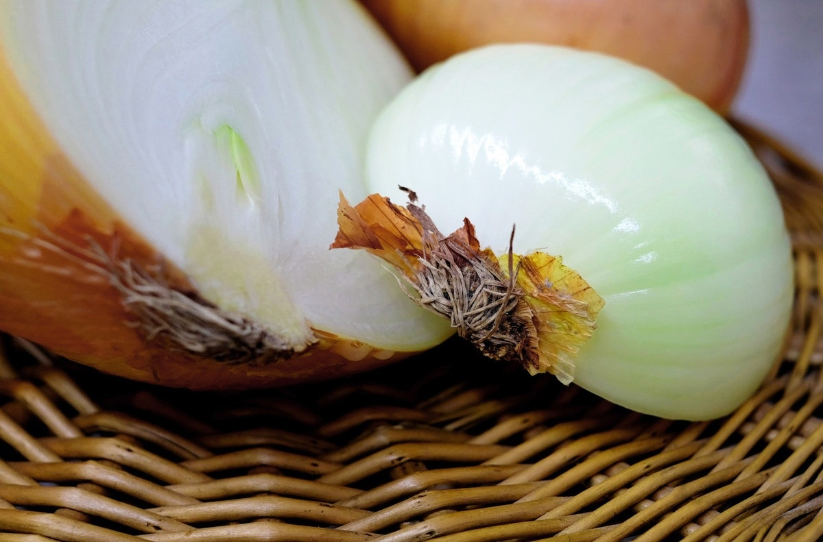 how to store onions - overview