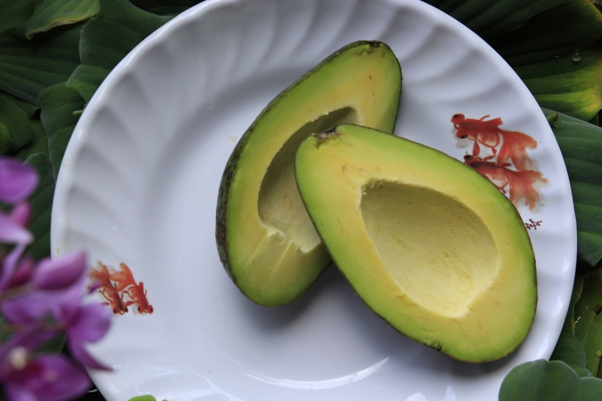 how to store avocados - feature