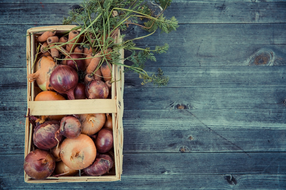 how to store onions - how to store