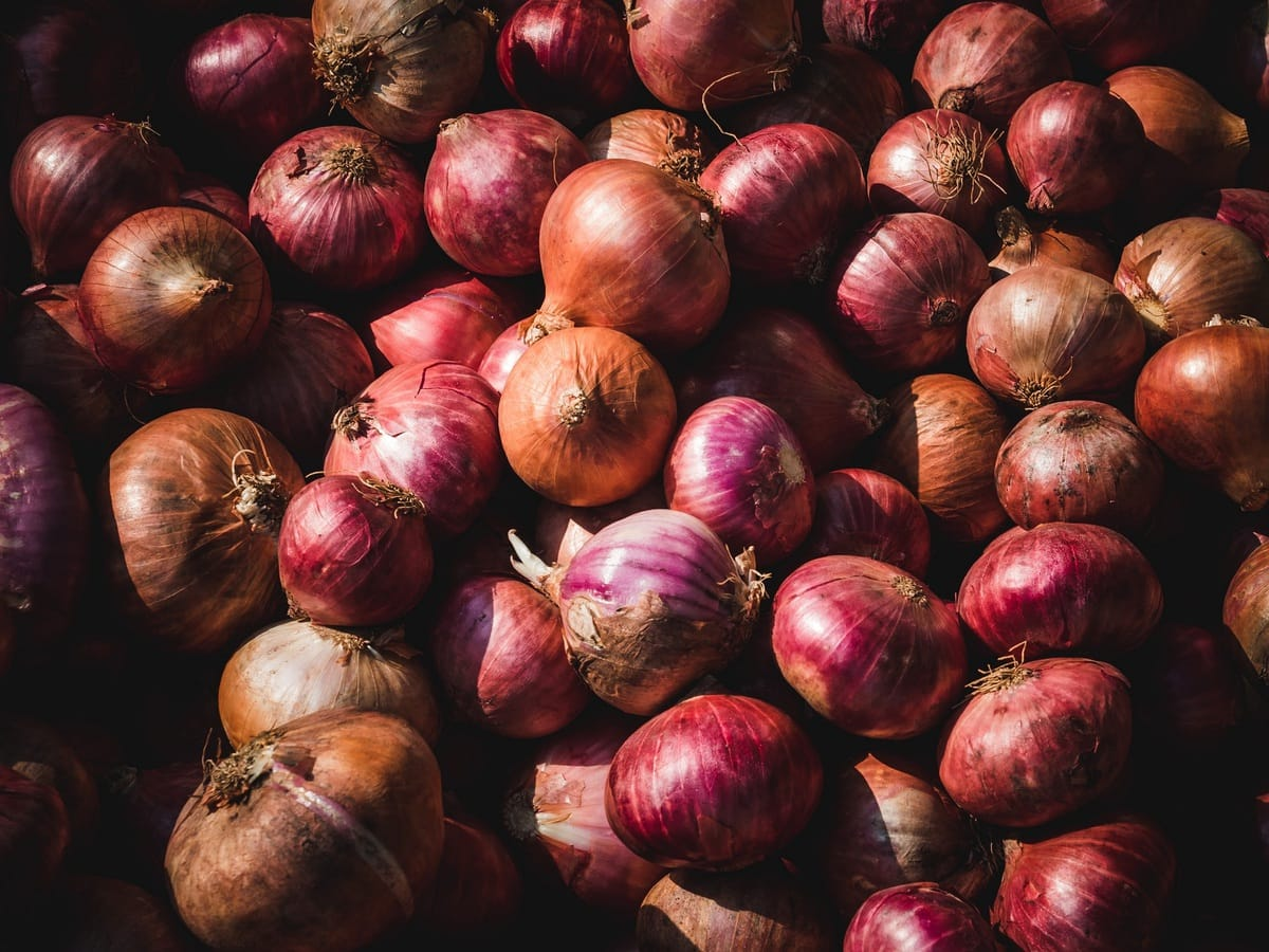 how to store onions - feature