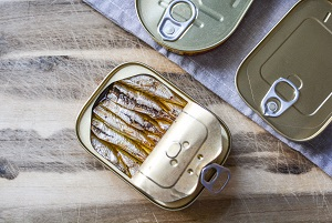 canned food - fish