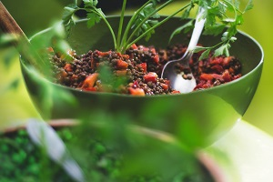 canned food list - lentils