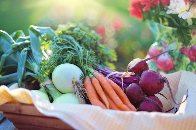 warzywa przechowywanie