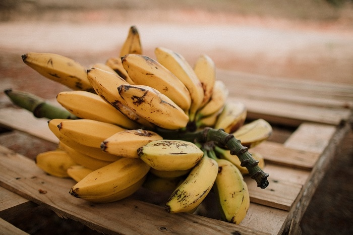 how to store bananas - go bananas