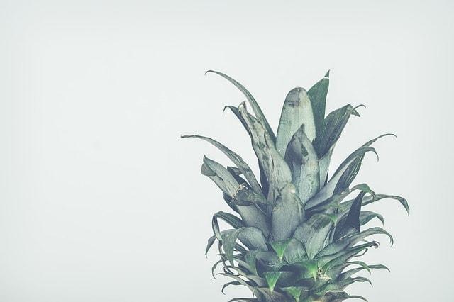 mrożenie ananasa