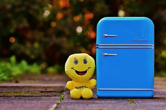 how to store ginger - fridge