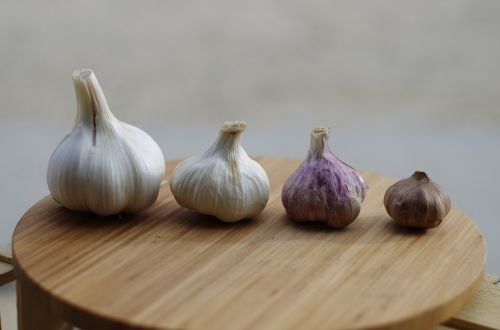 how to store garlic - gone bad