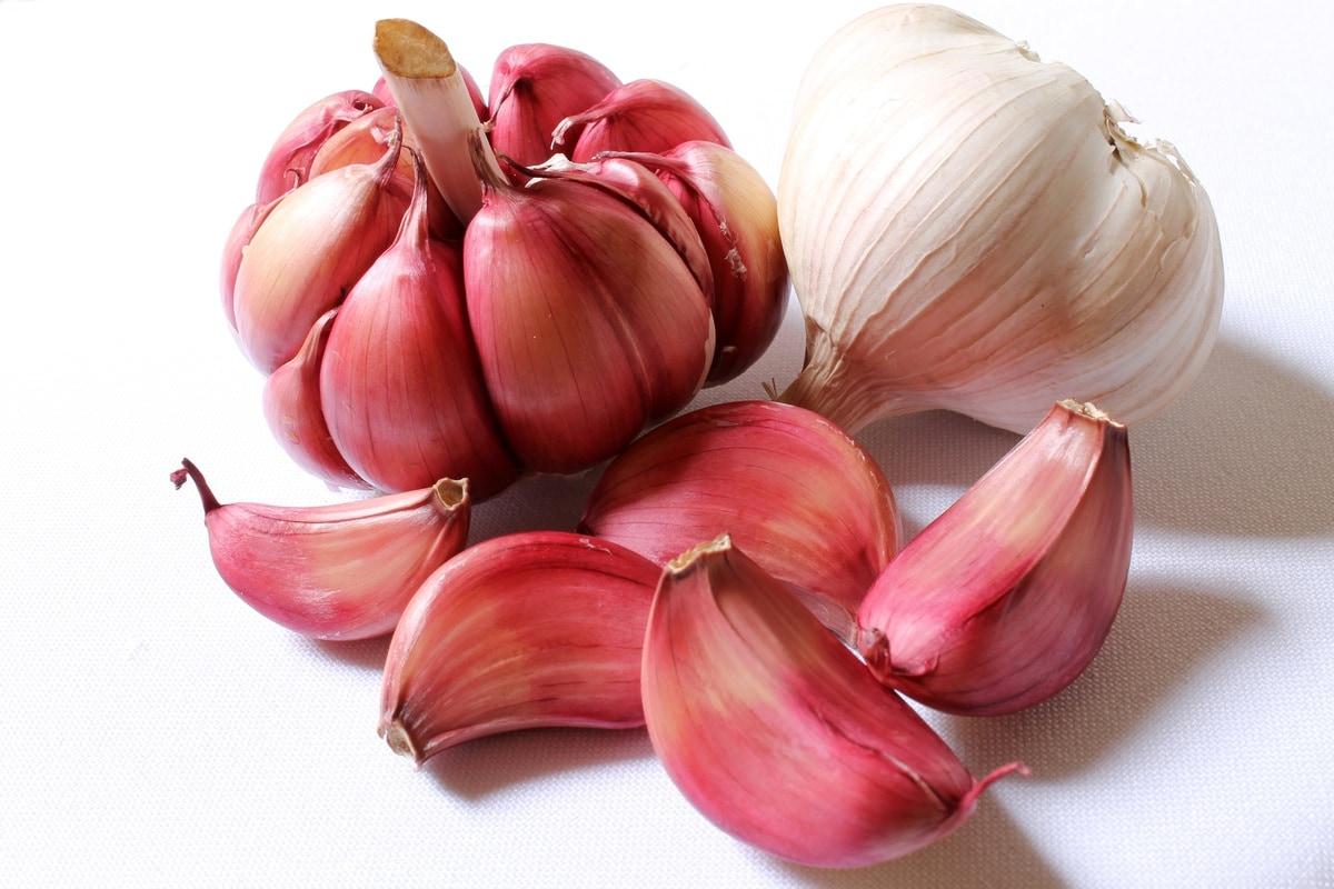 how to store garlic - health benefits